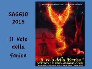 VoloFenice 2015